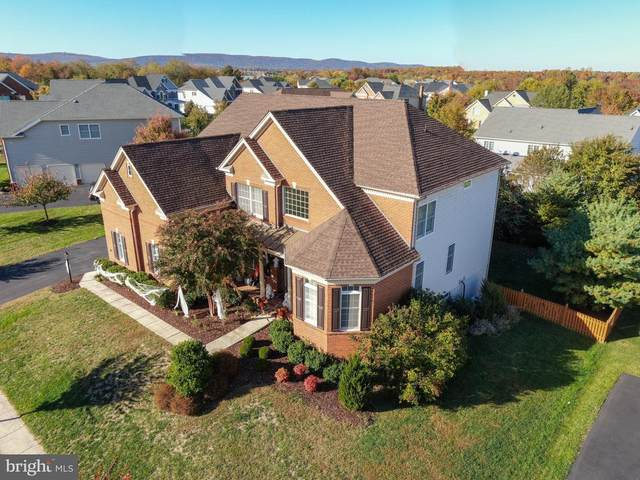 14510 Cove Mountain Court, HAYMARKET, VA 20169 (#VAPW488336) :: Larson Fine Properties