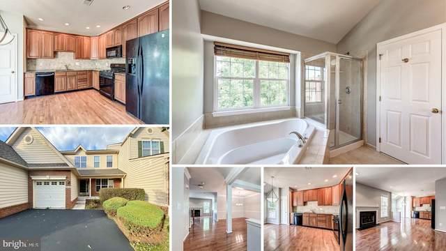 43214 Somerset Hills Terrace, ASHBURN, VA 20147 (#VALO404352) :: Seleme Homes