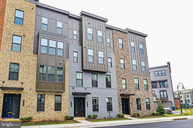 20460 Taft Terrace, ASHBURN, VA 20147 (#VALO404354) :: Seleme Homes