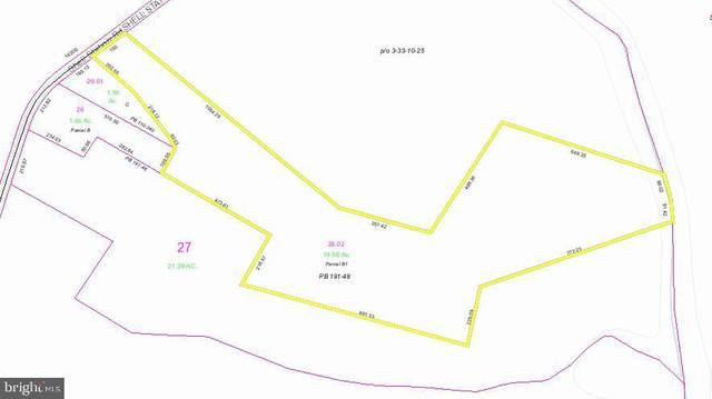Shell Station Rd, FRANKFORD, DE 19945 (#DESU156826) :: Ramus Realty Group