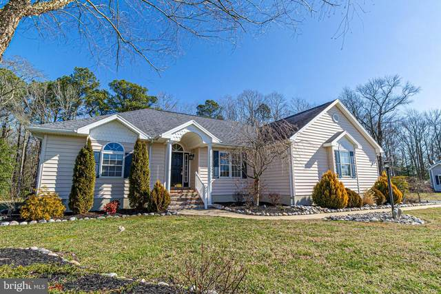 160 E Mill Pond Drive, SELBYVILLE, DE 19975 (#DESU156858) :: Ramus Realty Group
