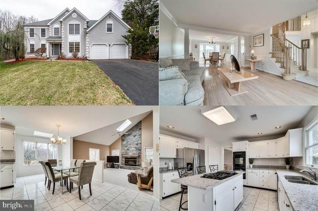 19800 Helmond Way, MONTGOMERY VILLAGE, MD 20886 (#MDMC697290) :: AJ Team Realty
