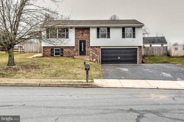 18 Homestead Drive, DENVER, PA 17517 (#PALA159404) :: TeamPete Realty Services, Inc