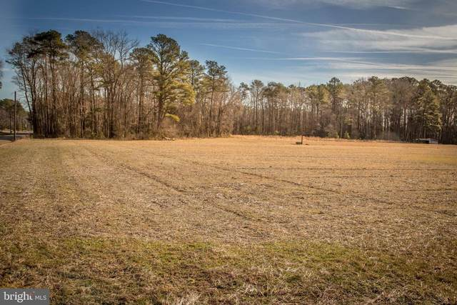 Lot 1 Quail Lane Road, SNOW HILL, MD 21863 (#MDWO112386) :: Radiant Home Group
