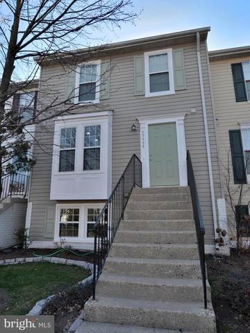 45434 Gable Square, STERLING, VA 20164 (#VALO404472) :: Great Falls Great Homes