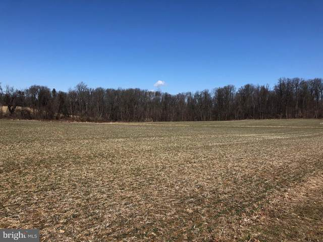1900 Beaver Hill Road Lot 11, CHESTER SPRINGS, PA 19425 (#PACT499692) :: Pearson Smith Realty