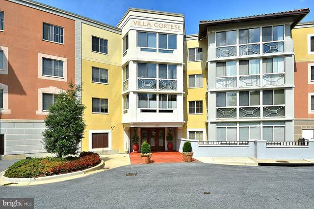 14801 Pennfield Circle #201, SILVER SPRING, MD 20906 (#MDMC697426) :: Radiant Home Group
