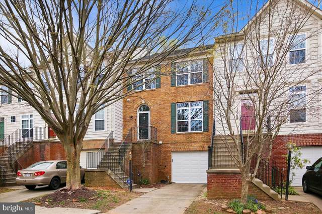 13506 Ansel Terrace, GERMANTOWN, MD 20874 (#MDMC697434) :: Dart Homes