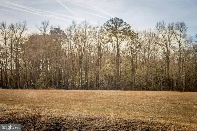 Lot 3 Quail Lane Road, SNOW HILL, MD 21863 (#MDWO112418) :: Radiant Home Group