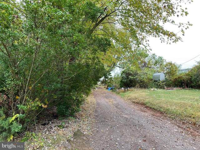 15432 Brandy Road, CULPEPER, VA 22701 (#VACU140790) :: AJ Team Realty