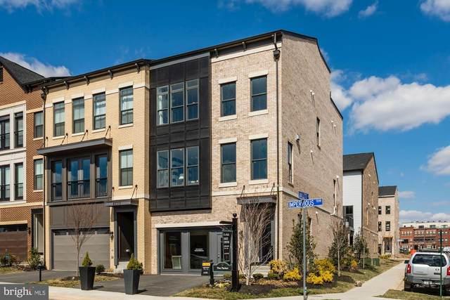 42312 Impervious Terrace, BRAMBLETON, VA 20148 (#VALO404570) :: The Miller Team