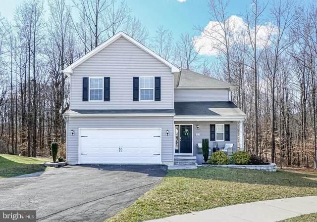 127 S Stream Drive, ELKTON, MD 21921 (#MDCC168262) :: Great Falls Great Homes