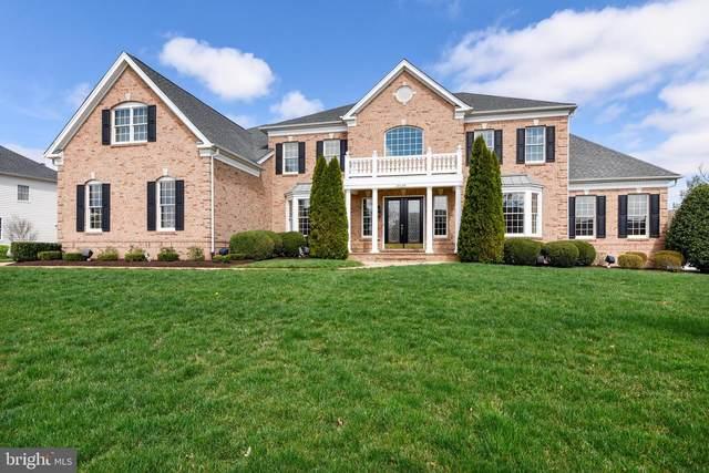 43154 Meadow Grove Drive, ASHBURN, VA 20147 (#VALO404700) :: The Putnam Group