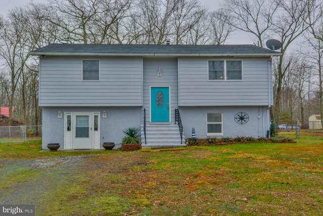 111 Red Toad Road, NORTH EAST, MD 21901 (#MDCC168264) :: AJ Team Realty