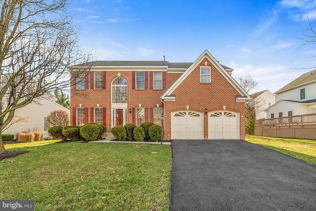 20615 Hiddengrove Court, ASHBURN, VA 20147 (#VALO404710) :: Colgan Real Estate