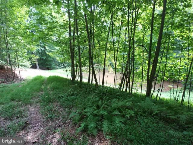 Reci Lane, LOCUST GROVE, VA 22508 (#VAOR136038) :: Jennifer Mack Properties