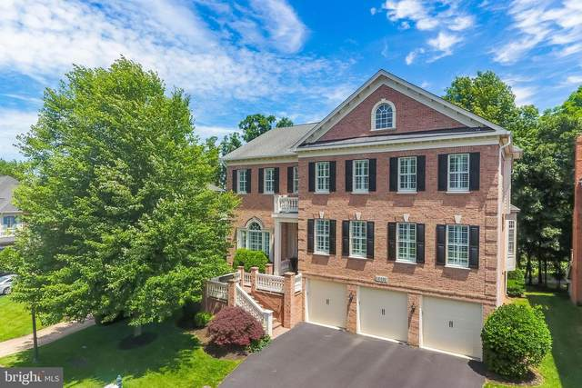 18192 Shinniecock Hills Place, LEESBURG, VA 20176 (#VALO404928) :: SURE Sales Group