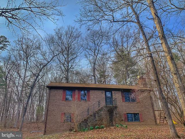 95 Castle Mountain Road, CASTLETON, VA 22716 (#VARP107146) :: Advance Realty Bel Air, Inc