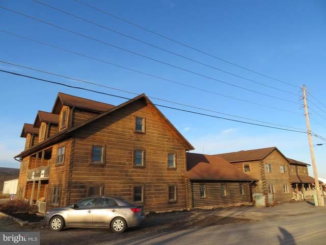 434 Swartz Road, LEWISBURG, PA 17837 (#PAUN100032) :: LoCoMusings