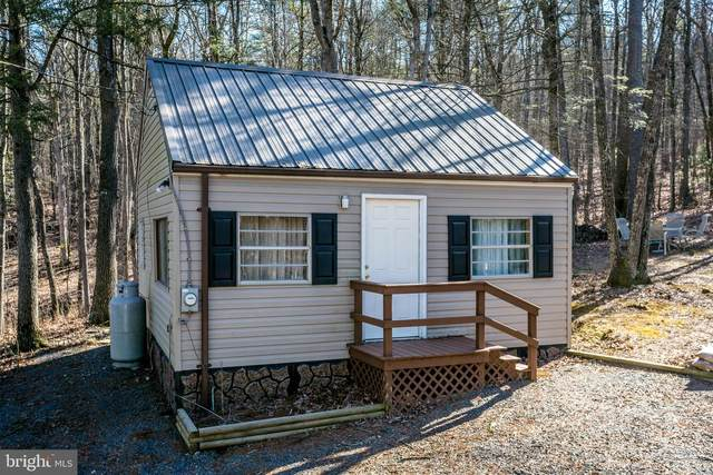 20444 Bowers Lane, BROADWAY, VA 22815 (#VARO101096) :: Pearson Smith Realty