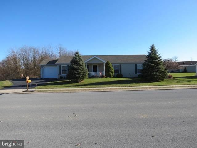 8 Katy Lane, MYERSTOWN, PA 17067 (#PALN112688) :: Iron Valley Real Estate