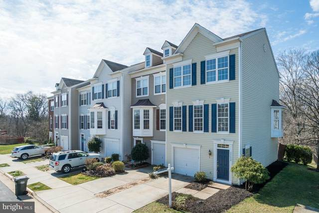 22699 High Haven Terrace, ASHBURN, VA 20148 (#VALO405034) :: Coleman & Associates