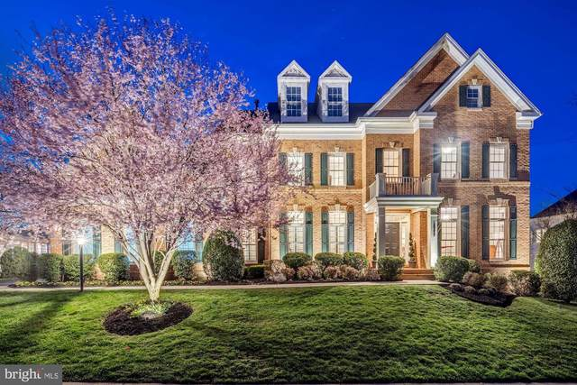 18777 Upper Meadow Drive, LEESBURG, VA 20176 (#VALO405084) :: Talbot Greenya Group