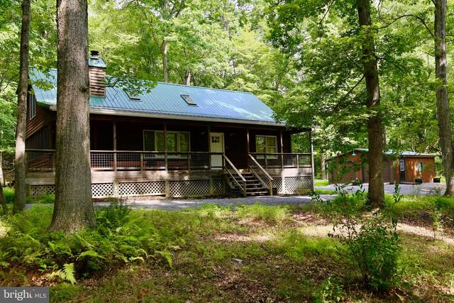 53 Warden Lake Ab, WARDENSVILLE, WV 26851 (#WVHD105836) :: Dart Homes