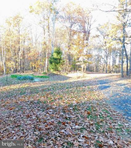Reci Lane, LOCUST GROVE, VA 22508 (#VAOR136110) :: Jennifer Mack Properties