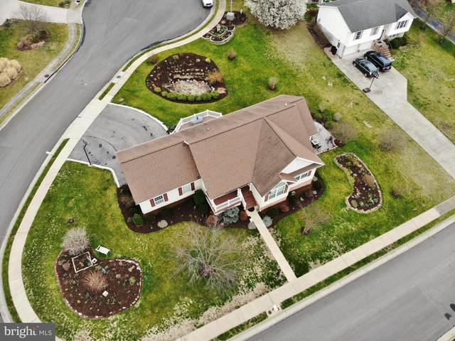 140 Tyler Drive, NEW MARKET, VA 22844 (#VASH118620) :: LoCoMusings