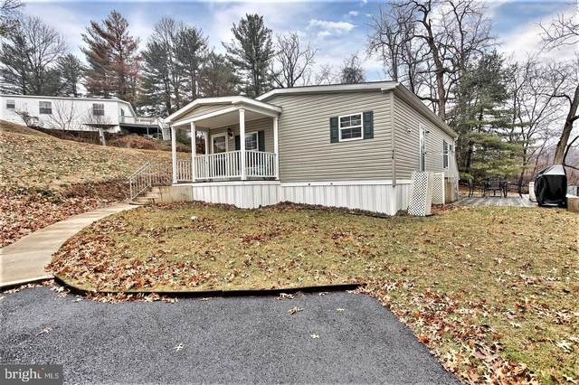 92K Jo Lee Drive, MIDDLETOWN, PA 17057 (#PADA119890) :: The Joy Daniels Real Estate Group