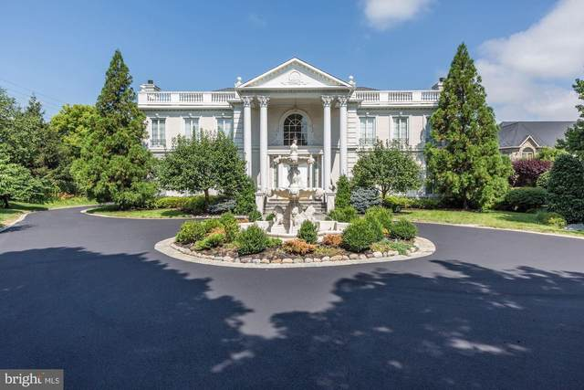 9300 Belle Terre Way, POTOMAC, MD 20854 (#MDMC698920) :: Advon Group