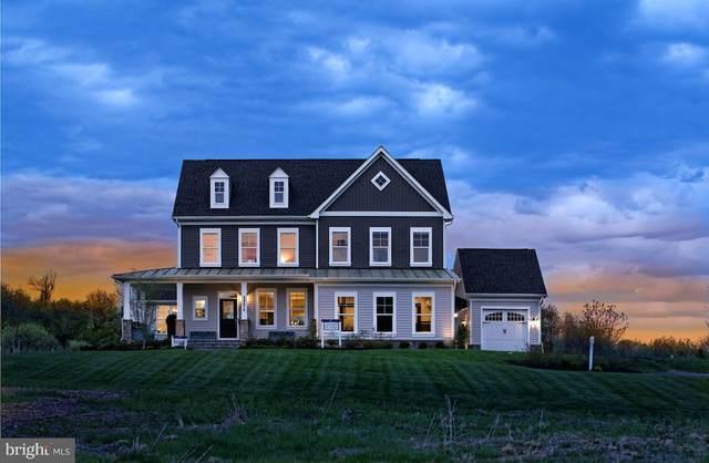35670 Platinum Drive, ROUND HILL, VA 20141 (#VALO405282) :: LoCoMusings