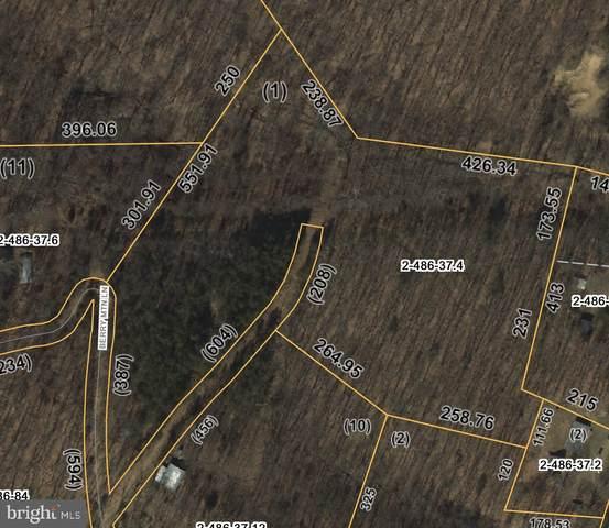 1 Berry Mountain Lane, MATHIAS, WV 26812 (#WVHD105844) :: Dart Homes