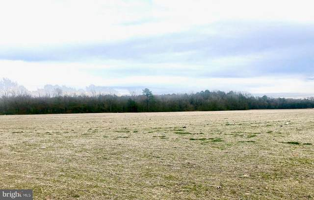 Lot 2 E Line Road, DELMAR, MD 21875 (#MDWC107328) :: ExecuHome Realty
