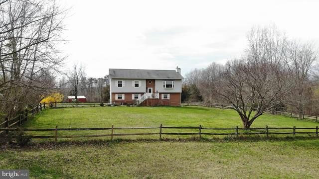 8908 Orchard Lane, SPOTSYLVANIA, VA 22551 (#VASP220142) :: RE/MAX Cornerstone Realty