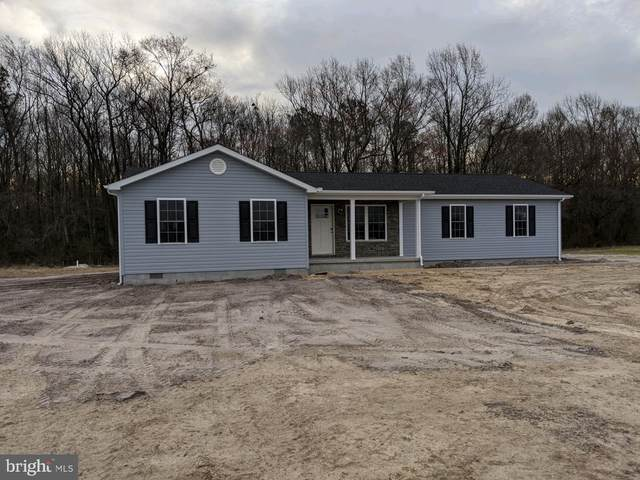 7843 New Hope Road, WILLARDS, MD 21874 (#MDWC107332) :: ExecuHome Realty