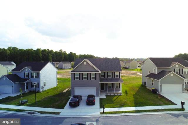 299 Erin Ave N, FELTON, DE 19943 (#DEKT236880) :: Atlantic Shores Sotheby's International Realty