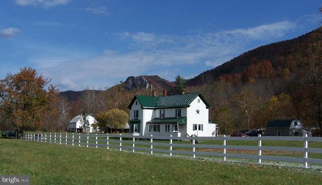 166 Bear Foot, SENECA ROCKS, WV 26884 (#WVPT101414) :: CR of Maryland