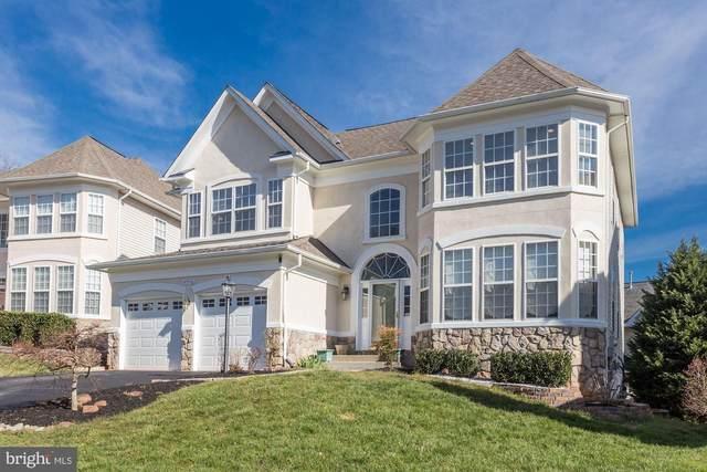 47736 Beaufort Court, POTOMAC FALLS, VA 20165 (#VALO405602) :: Great Falls Great Homes