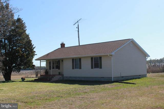 1345 Hoopers Island Road, CHURCH CREEK, MD 21622 (#MDDO125140) :: McClain-Williamson Realty, LLC.