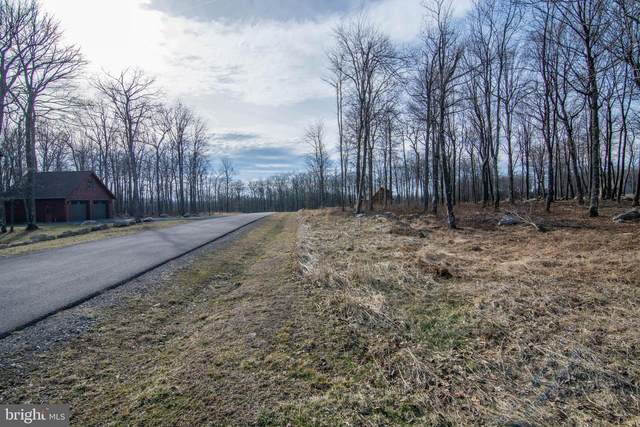 Lot 56 Scarlett Ct, MC HENRY, MD 21541 (#MDGA132278) :: The Matt Lenza Real Estate Team
