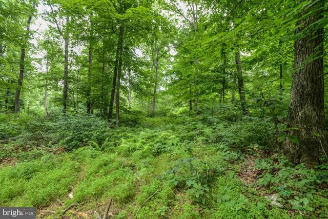 Browns Quarry Rd Lot 3, SABILLASVILLE, MD 21780 (#MDFR261270) :: AJ Team Realty