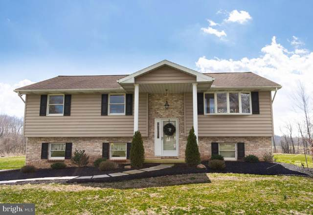 1496 Stonemill Drive, ELIZABETHTOWN, PA 17022 (#PALA160474) :: John Smith Real Estate Group