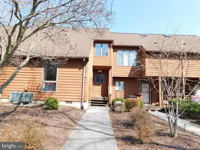 258 Tecumseh Trail, HEDGESVILLE, WV 25427 (#WVBE175684) :: City Smart Living