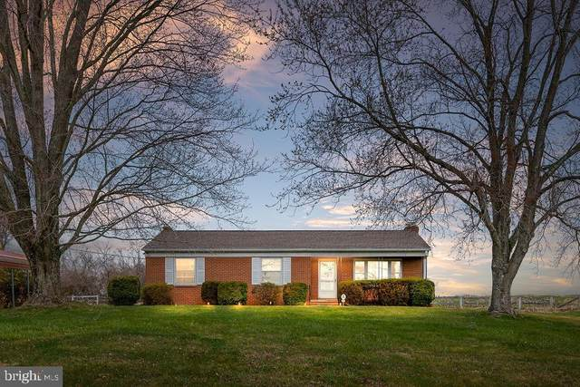 8430 Springs Road, WARRENTON, VA 20186 (#VAFQ164680) :: AJ Team Realty