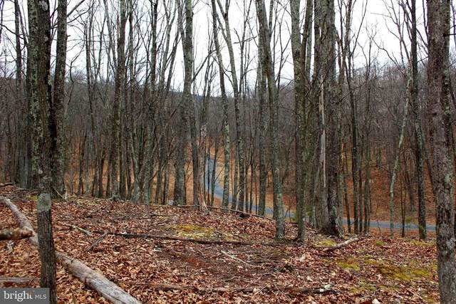LOT 4 Helmick Rock-Trout Pass Road, MATHIAS, WV 26812 (#WVHD105858) :: The Redux Group