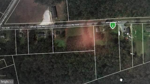 4562 White Deer Road, DELMAR, DE 19940 (#DESU158040) :: Bob Lucido Team of Keller Williams Integrity