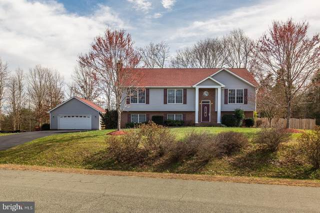 1163 Tall Pines Drive, MINERAL, VA 23117 (#VALA120822) :: The Redux Group