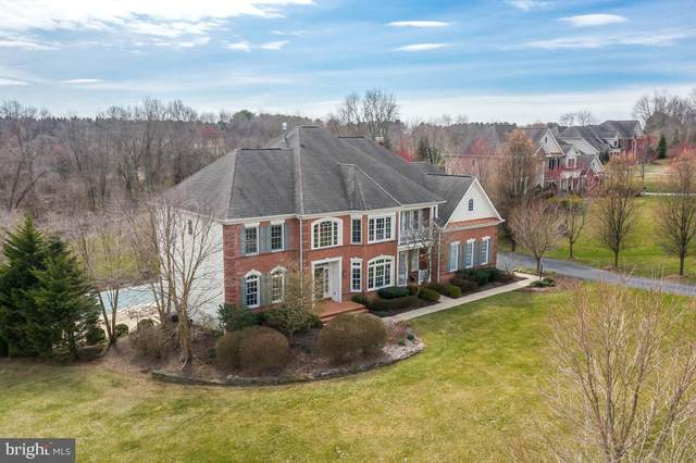 6055 Moore Drive, SYKESVILLE, MD 21784 (#MDCR195278) :: The Bob & Ronna Group